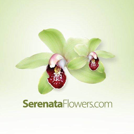 Serenata Flowers_logo