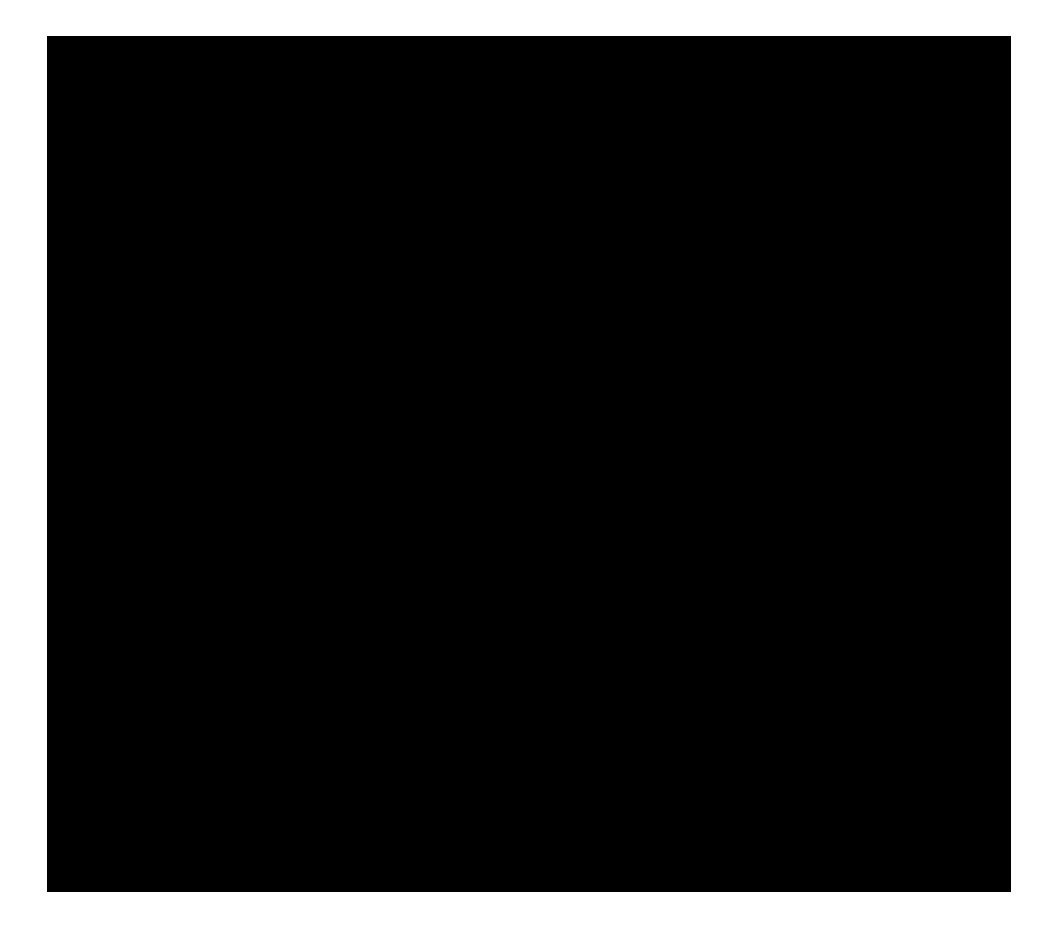 Laylo Pets_logo